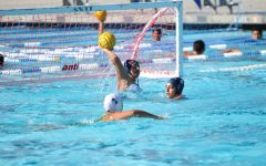 Women's Water Polo struggles in its initial stretch