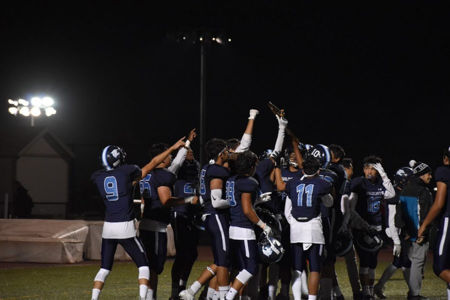 The Dougherty Valley Wildcats celebrate after a touchdown.