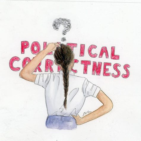 Political correctness makes our politics incorrect