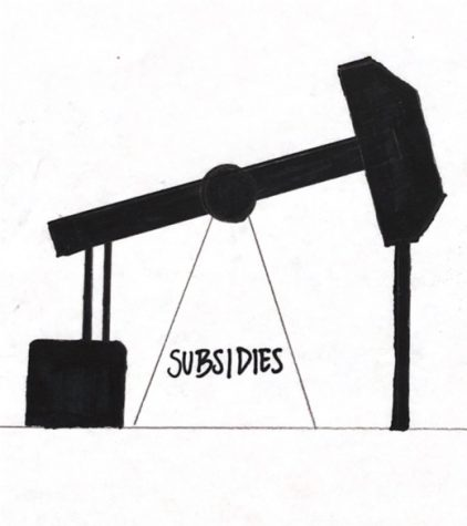 Government subsidizes fossil fuels at the expense of the environment