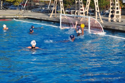DV Men's Water Polo struggles against league powerhouses