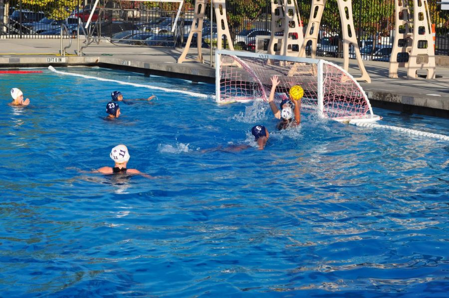 Women's Water Polo loses three games against powerful defenses