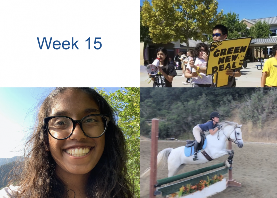 Humans of DV: Week 15