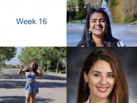 Humans of DV: Week 16