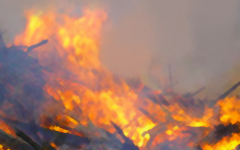 COVID-19 has caused the government to lax its restrictions on firefighters, with early effects seen on the Florida wildfires already.
