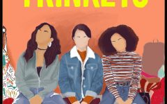 """Navigation to Story: Netflix's """"Trinkets"""" concludes satisfactorily"""