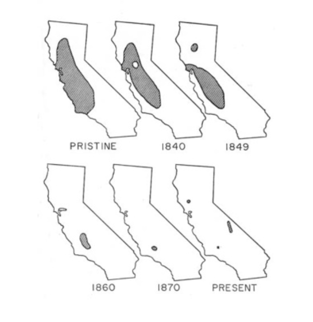 Tule Elk Population Distribution Maps of California, Past to Present