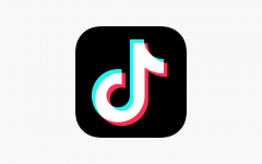 TikTok songs are ever-popular with the app growing, but some songs remain iconic throughout the years.