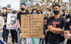 While unity amongst any Asians seems appealing at first, it only masks the stark differences between us instead of wiping them clean.