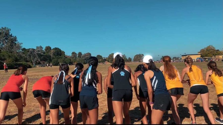 The+varsity+girls+line+up+at+the+start+of+the+three+mile+cross+country+course