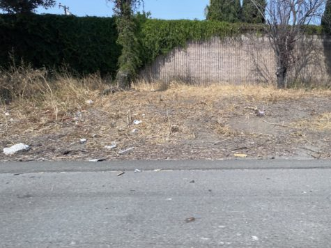 Trash piles up on the sides of the freeways in the Bay Area.